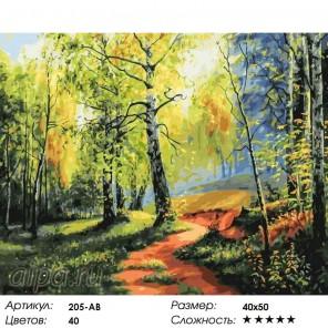 Березовая роща Раскраска картина по номерам на холсте Белоснежка