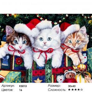 Количество цветов и сложность Рождественские котята Раскраска картина по номерам акриловыми красками Color Kit