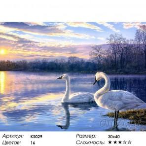 Количество цветов и сложность Лебеди Раскраска картина по номерам акриловыми красками Color Kit