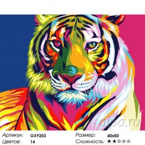 Радужный тигр Раскраска картина по номерам на холсте