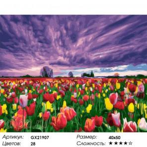 Количество цветов и сложность Цветение тюльпанов Раскраска картина по номерам акриловыми красками на холсте