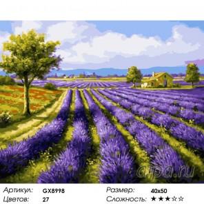 Аромат лаванды Раскраска картина по номерам акриловыми красками на холсте