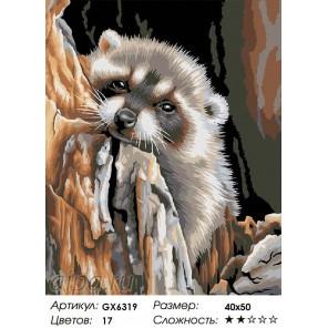 Енот-мечтатель Раскраска картина по номерам акриловыми красками на холсте