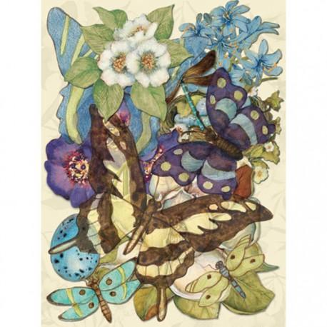 Мир растений Чипборд для скрапбукинга, кардмейкинга  K&Company
