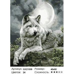 Серый призрак Раскраска картина по номерам акриловыми красками на холсте