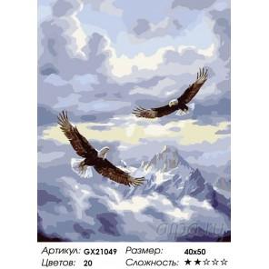 Парящие в высоте Раскраска картина по номерам на холсте