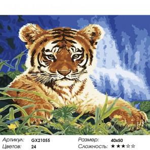 Гордый маленький тигренок Раскраска картина по номерам на холсте