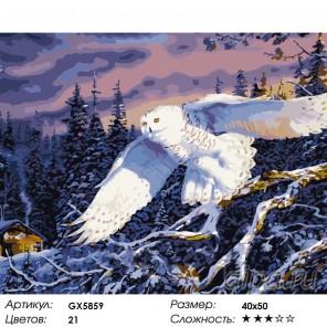 Полярный охотник Раскраска картина по номерам на холсте