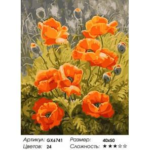 Количество цветов и сложность Оранжевые маки Раскраска картина по номерам акриловыми красками на холсте