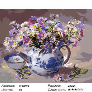 Количество цветов и сложность Ромашки в чайнике Раскраска картина по номерам акриловыми красками на холсте