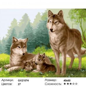 Количество цветов и сложность Волчье счастье Раскраска картина по номерам акриловыми красками на холсте