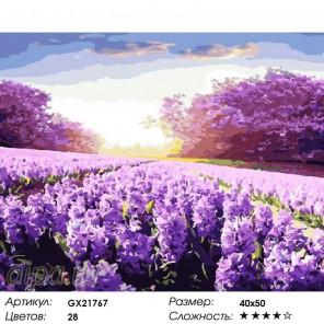Сиреневое поле Раскраска картина по номерам на холсте