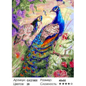 Пара павлинов Раскраска картина по номерам акриловыми красками на холсте
