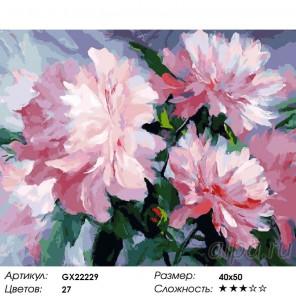 Розовое наслаждение Раскраска картина по номерам на холсте