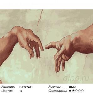 Сотворение Адама Раскраска картина по номерам на холсте