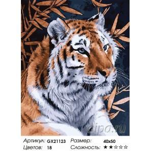 Тигриный взгляд Раскраска картина по номерам акриловыми красками на холсте