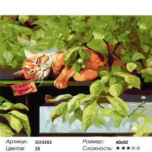 Количество цветов и сложность Рыжий Раскраска картина по номерам акриловыми красками на холсте