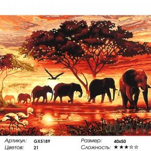 Слоны на закате Раскраска картина по номерам на холсте