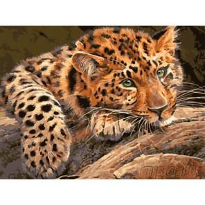 Задумчивый леопард Раскраска картина по номерам на холсте