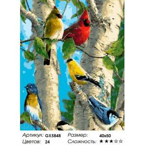 Весенние птички Раскраска картина по номерам на холсте