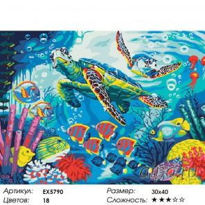 Количество цветов и сложность Теплое течение Раскраска картина по номерам акриловыми красками на холсте