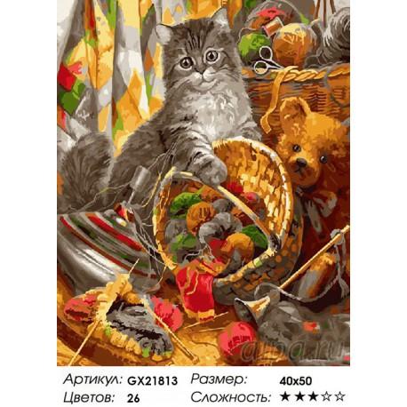 Количество цветов и сложность Пушистый проказник Раскраска картина по номерам акриловыми красками на холсте