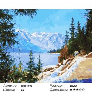 Снежные вершины Раскраска картина по номерам на холсте