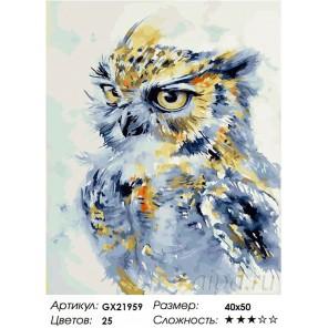 Количество цветов и сложность Любознательная сова Раскраска картина по номерам акриловыми красками на холсте