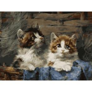 Котята в корзине Раскраска картина по номерам акриловыми красками на холсте