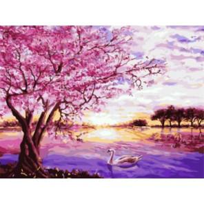 Сакура и лебедь Раскраска картина по номерам акриловыми красками на холсте