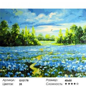 Васильковое поле Раскраска картина по номерам акриловыми красками на холсте