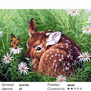 Количество цветов и сложность Олененок в траве Раскраска картина по номерам акриловыми красками на холсте