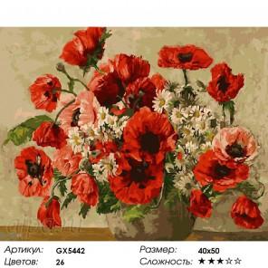 Количество цветов и сложность Маки с маргаритками Раскраска картина по номерам акриловыми красками на холсте