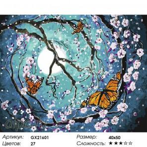 Количество цветов и сложность Полет бабочек Раскраска картина по номерам акриловыми красками на холсте