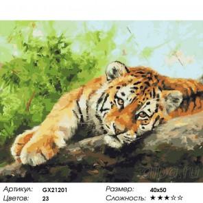 Количество цветов и сложность Отдыхающий тигр Раскраска картина по номерам акриловыми красками на холсте