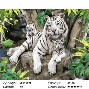 Количество цветов и сложность Бенгальские тигры Раскраска картина по номерам акриловыми красками на холсте