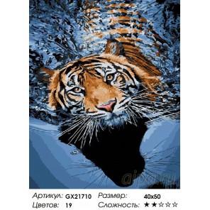 Количество цветов и сложность Плывущий тигр Раскраска картина по номерам акриловыми красками на холсте