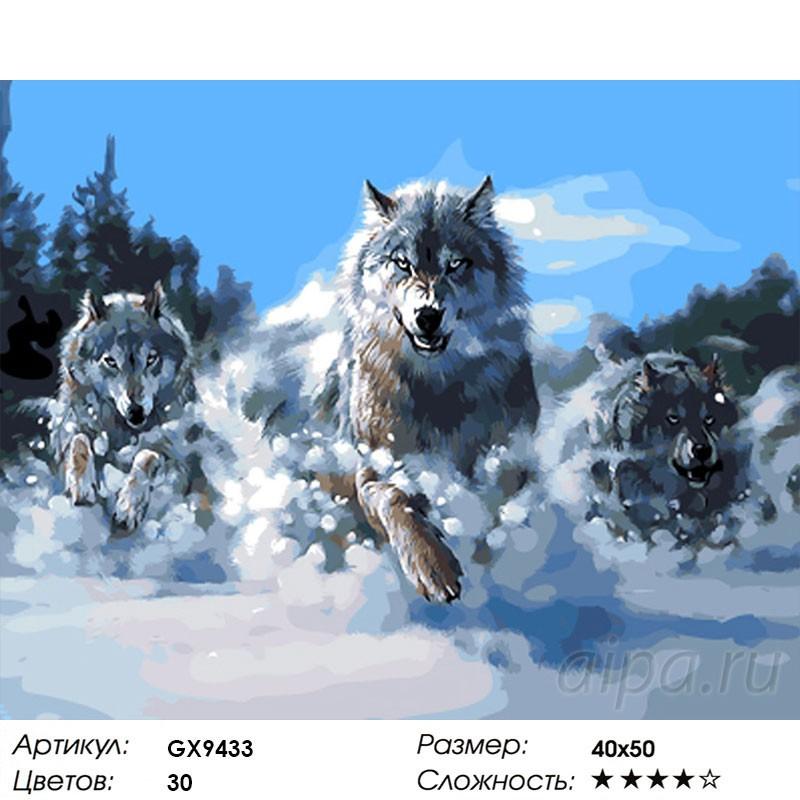 Indigenous  Running Wolf