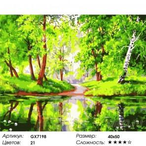 Лесное зеркало Раскраска картина по номерам на холсте