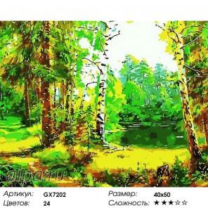 Лесная сказка Раскраска картина по номерам на холсте