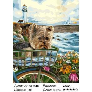 Йорк на фоне маяка Раскраска картина по номерам акриловыми красками на холсте