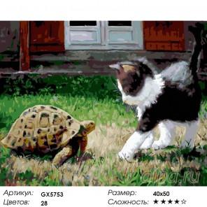 Котенок и черепаха Раскраска картина по номерам акриловыми красками на холсте