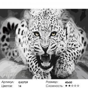 Ярость леопарда Раскраска картина по номерам акриловыми красками на холсте