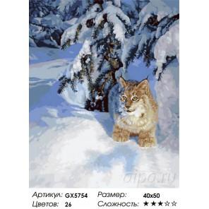 Рысь в снежной тайге Раскраска картина по номерам акриловыми красками на холсте