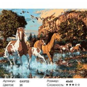 Дикий табун Раскраска картина по номерам акриловыми красками на холсте