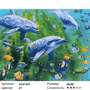 Дельфины на глубине Раскраска картина по номерам на холсте