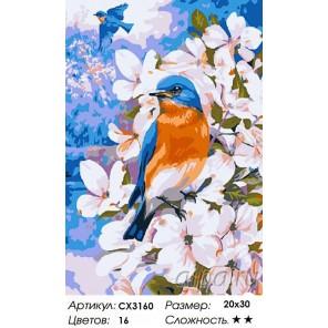 Весенние пташки Раскраска картина по номерам на холсте
