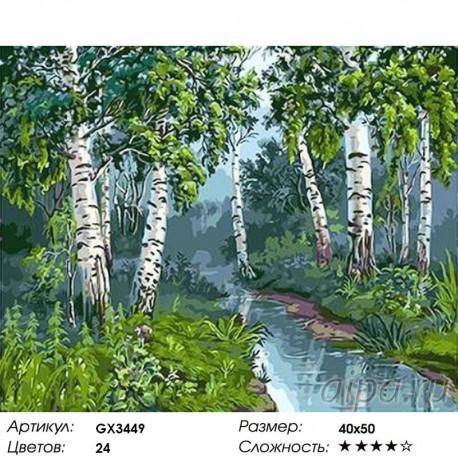 Количество цветов и сложность Березовый лес Раскраска картина по номерам акриловыми красками на холсте