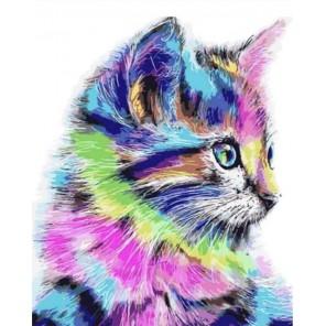 Разноцветная кошка Алмазная мозаика на подрамнике
