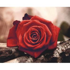 Красная роза Алмазная мозаика на подрамнике